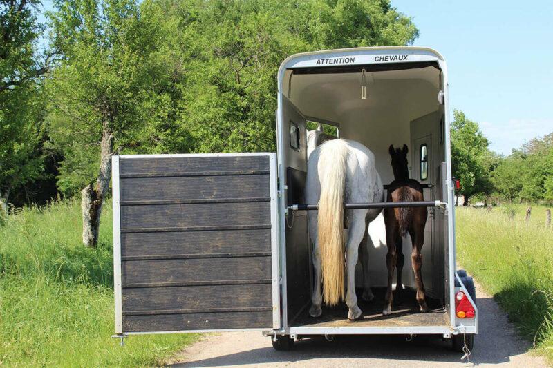 Remolque para 1 caballo y medio Touring One 11