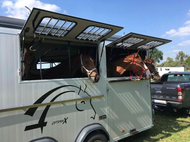 Remolque para 4 caballos Optimax 18